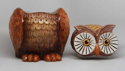 8 Inch Big Eyed Owl Shaped Ceramic Cookie Jar Statue Figurine