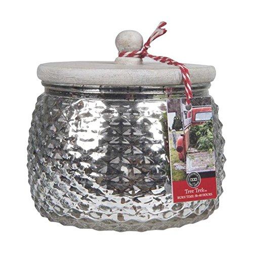 Bridgewater Candle 106 Ounce Holiday Jar Candle - TREE TREK