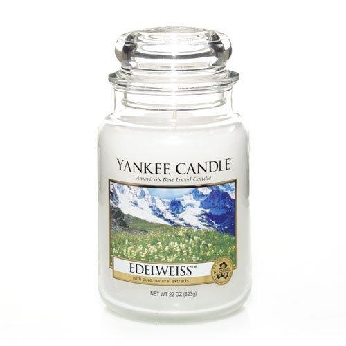 Yankee Candle 22 oz Large Holiday Jar Candle EDELWEISS