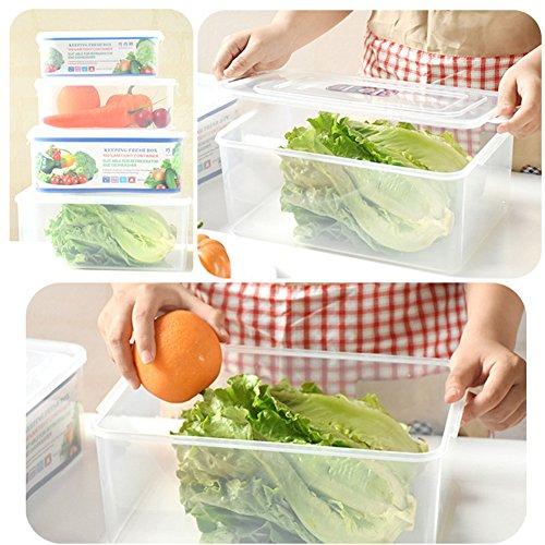 Simonshop 4pcsset Large Capacity Food Storage Box Refrigerator Crisper Fruits Preservation Microwave lunch box Style A