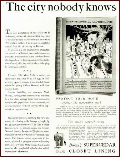 1929 ARCHITECTURAL AD FOR BROWNS CEDAR CLOSET LININGS Original Paper Ephemera Authentic Vintage Print Magazine Ad  Article